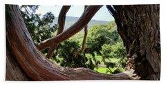 View Through The Tree Beach Towel by Carol Lynn Coronios
