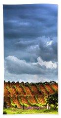 Vineyard 01 Beach Sheet by Edgar Laureano
