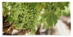 Wine Vineyard Of St. Helena - Grapevine Napa Valley Photography Beach Sheet by Melanie Alexandra Price