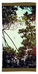 Beach Towel featuring the digital art Vintage Banana Spider by Megan Dirsa-DuBois