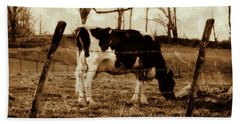 Vintage Cow Grazing - Black And White Cow Sepia Brown Effect Beach Sheet