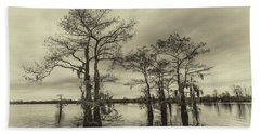 Beach Towel featuring the photograph Vintage Henderson Swamp  by Andy Crawford