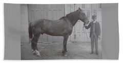 Vintage Photograph 1902 Horse With Handler New Bern Nc Area Beach Sheet