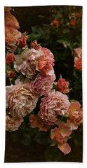 Vintage Roses, 6.17 Beach Towel