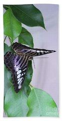 Violet Clipper Butterfly V2 Beach Sheet