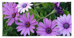 The African Daisy Flowers Beach Sheet by Isam Awad