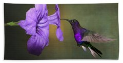 Violet Sabrewing Hummingbird Beach Towel