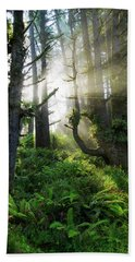 Beach Towel featuring the photograph Vision by Chad Dutson