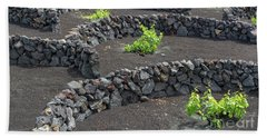 Volcanic Vineyards Beach Towel by Delphimages Photo Creations