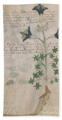 Voynich Flora 03 Beach Sheet