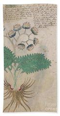 Voynich Flora 14 Beach Sheet