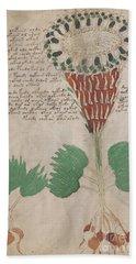 Voynich Flora 15 Beach Towel