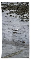 Wading Gull Beach Sheet