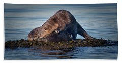 Beach Towel featuring the photograph Wake Up by Randy Hall