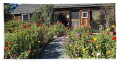Walk Among The Zinnias Beach Towel by Catherine Gagne