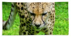 Walking Cheeta Beach Towel