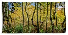 Beach Towel featuring the photograph Walking In The Woods by Scott Read