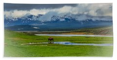Beach Towel featuring the photograph Walking The Big Valley by Yeates Photography