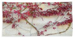 Wall Of Leaves 2 Beach Towel by Dubi Roman