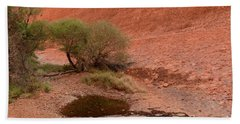 Beach Towel featuring the photograph Walpa Gorge 01 by Werner Padarin
