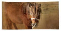 Beach Sheet featuring the photograph Wanna Be Friends? by Wallaroo Images