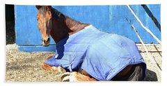 Warm Winter Day At The Horse Barn Beach Sheet