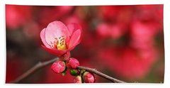 Warmth Of Flowering Quince Beach Towel