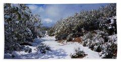 Warner Springs Snow Beach Sheet