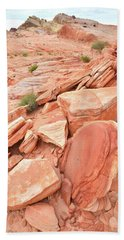 Beach Towel featuring the photograph Wash 4 Color In Valley Of Fire by Ray Mathis