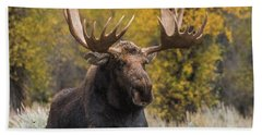 Beach Towel featuring the photograph Washakie During The Rut Season by Yeates Photography
