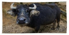 Water Buffalo On Dry Land Beach Sheet by Chris Flees