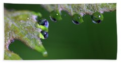 Beach Towel featuring the photograph Water Droplet IIi by Richard Rizzo