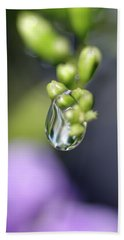 Beach Towel featuring the photograph Water Droplet Iv by Richard Rizzo