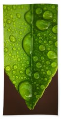 Water Droplets On Lemon Leaf Beach Towel
