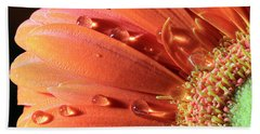 Water Drops On Colorful Flower Petals Beach Towel