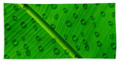 Beach Towel featuring the painting Water Drops On Palm Leaf by Georgeta Blanaru