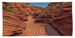 Water Hole Canyon Beach Towel by David Cote