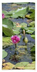 Water Lilies At Giverny - 3 Beach Towel