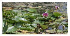 Water Lilies At Giverny Beach Towel