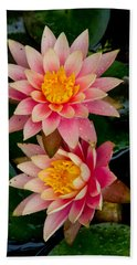 Beach Towel featuring the photograph Water Lilies by Brent L Ander