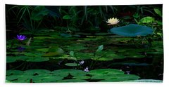 Water Lilies In The Pond Beach Sheet