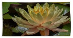 Water Lilly 1 Beach Towel