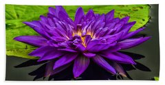 Water Lily 15-2 Beach Towel