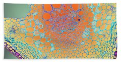 Water Lily Homage Beach Towel