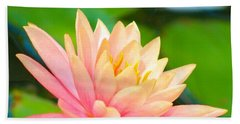 Floating Water Lily  Beach Towel