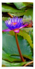 Beach Towel featuring the photograph Water Lily In Tahiti by Sue Melvin