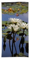 Water Lily Reflections Beach Towel