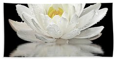 Water Lily Reflections On Black Beach Towel by Gill Billington
