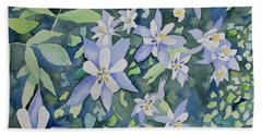 Beach Towel featuring the painting Watercolor - Blue Columbine Wildflowers by Cascade Colors