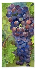 Watercolor Grapes Painting Beach Sheet by Olga Shvartsur